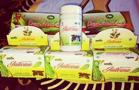 Teh jati unt melangsingkan & melunturkan lemak & menurunkan kolesterol