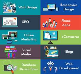 Web developer web designer responsive layouts