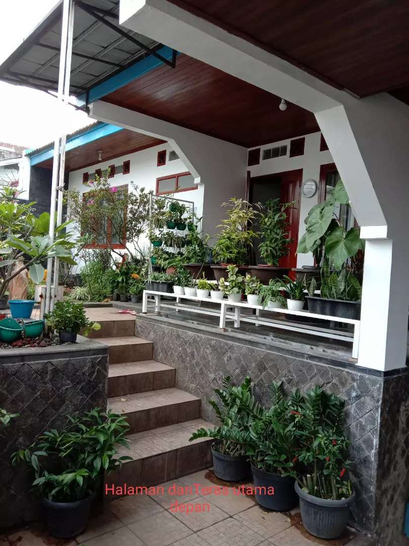 Kost muslimah Mountain and City View 0
