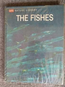 Ensiklopedia mengenai ikan. Edisi khusus LIFE.magazine