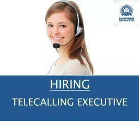 WANTED LADY TELECALLING EXECUTIVE