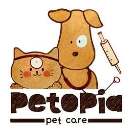 PETOPIA PET CARE - Hotel Hewan, Grooming, Dokter Hewan & Housecalling