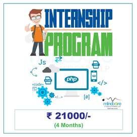 Web Designing & Development Internship