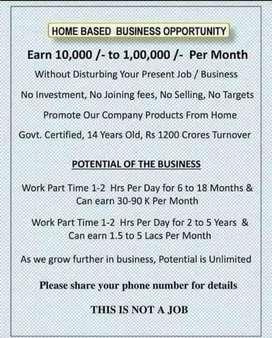Home business opportunity (entrepreneurship)