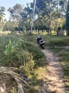 6cent plot in manakodam near to TD Thuravoor...