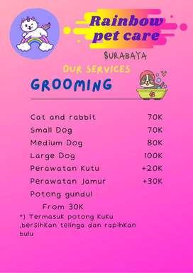 Panggilan grooming anjing kucing Surabaya