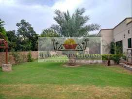 Outclass Furnished Farm House For Stay Purpose Per Day Rent