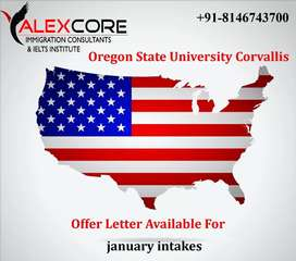 ALEXCORE immigration and ielts institute in khanna