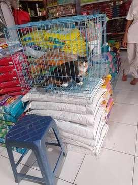 Mencari karyawan toko sekaligus perawat binatang