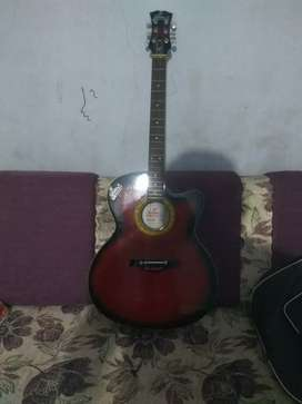 Guitar and cover and extra taar