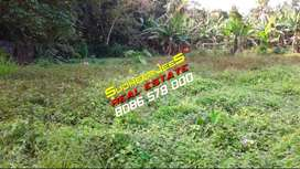 40 Cents Prime Property Near AARAMADA,THIRUMALA For Sale...SudheerJeeS
