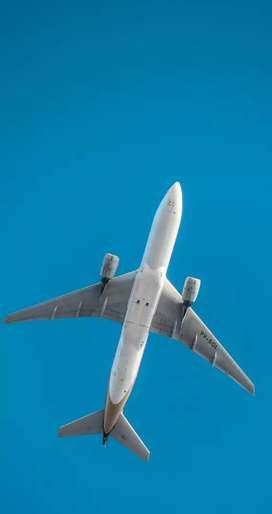Become Airhostess and Air steward