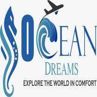 Internet Marketing Business Opportunity For Fresher/Working Tourism