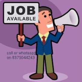 Need a freshers for data typing home based job