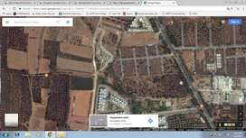 4 Acres of Land available for Lease on Chandapur-Anekal Road, Bangalor