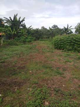 Dijual Tanah Subang Cocok Untuk Pabrik, Gudang, Pertanian, Dll