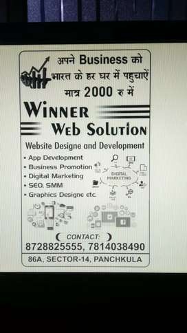 Make your website and promote business