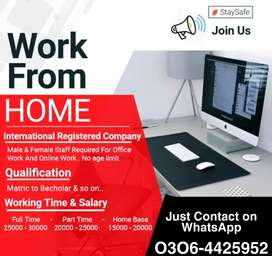Full time/ Part time/ Home Based Online Job for Boys, Girls, Students