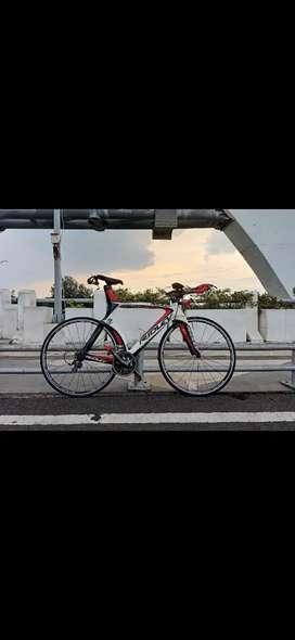 Sepeda Ridley Dean Carbon Triathlon/Time Trial