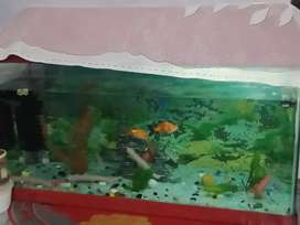 good condition medium size . with two shark and two golden fish