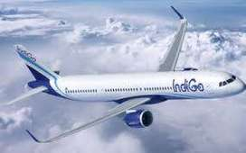 JOB IN INDIGO AIRLINE COMPANY FOR FRESHER AND EXPERIENCE ALL CANDIDATE