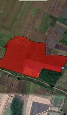Dijual Tanah 4 Hektar