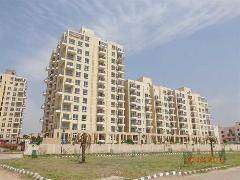 looking for ready to move flat in mohali