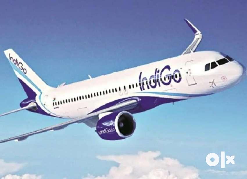 Hiring for ground staff in IndiGo airlines 0