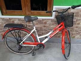 Jual sepeda phoenik