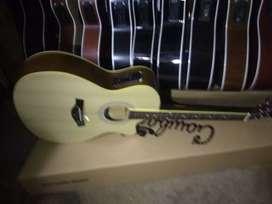 Gitar akustik elektrik new string