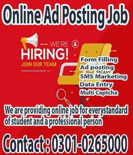 Wondrous online Data Entry job from home for students