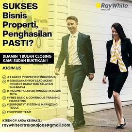 Marketing Eksekutif Ray White Citraland