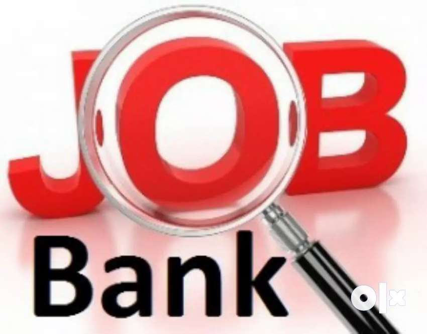 Hiring Start in Banking sector in Sales Executive Profile 0