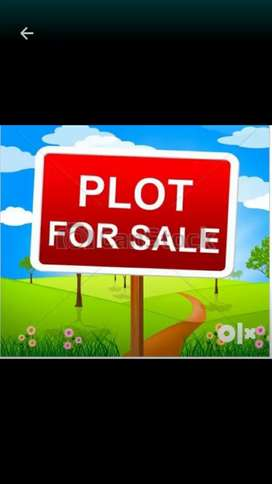 Two plot for sale very good location