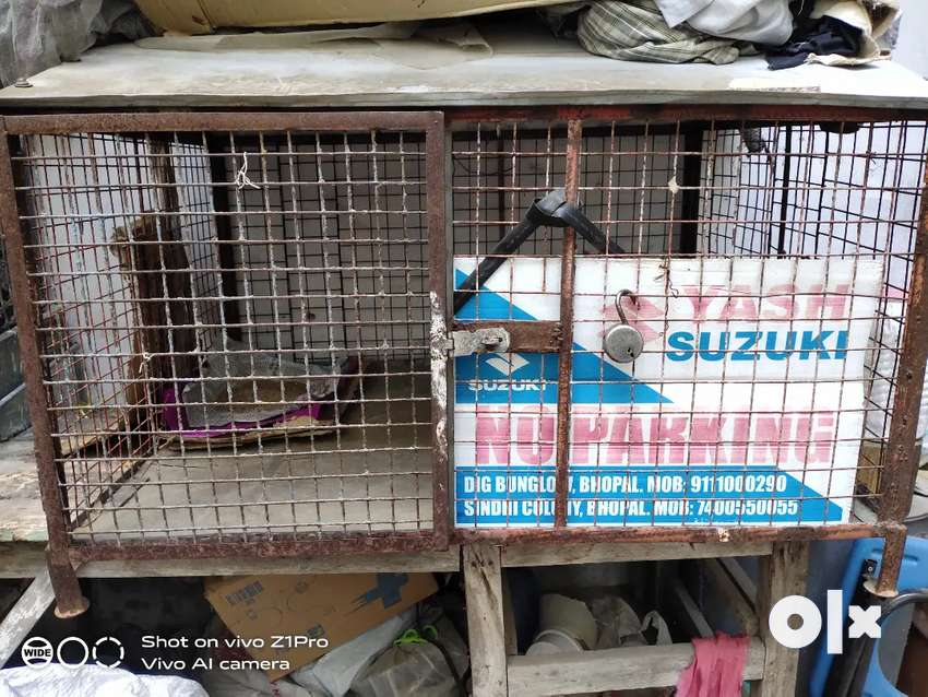 Cat, dog cage heavy in iron