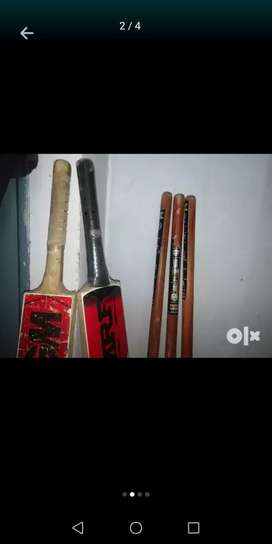 Cricket bat and wickets