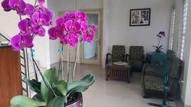 Hotel aktif masih beroperasi Cikutra Dago Bandung