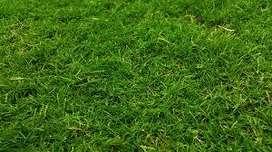 tanah siap bangun di raffles garden