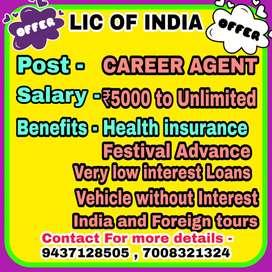 Career Agency in Lic of India