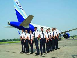 Vacancy Open for IndiGo Airlines Various Posts Hurry Apply Now.