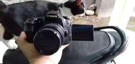 DSLR dewa Canon EOS 60D Full HD Video layar lipat