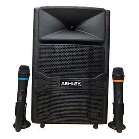 speaker portable wireles meeting ashley RQ12 12 inc amxy