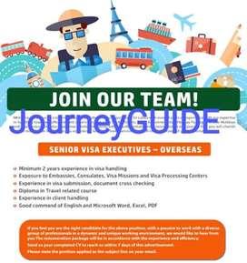 Visa Executive / Visa Processing Officer