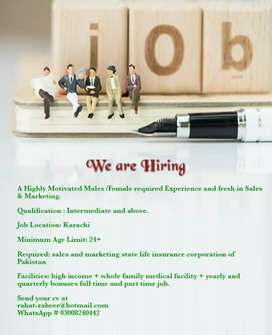 Job Opportunity - Sales and Marketing