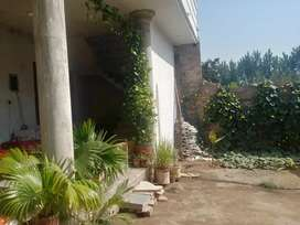 Warsak road putwar home for sale 2 shops