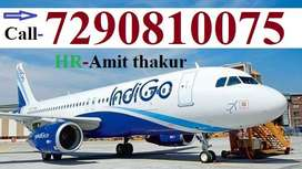 Airline/Airport Urgent hiring for groundstaff ,Ground / Airport Statio