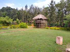 One plot in a Resort for sale in full fledged resort
