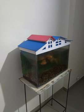 1.5 feet aquarium with new top cover with stand