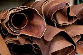 Leather Raw hides taining