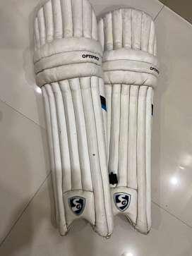 SG Cricket kit(Optipro super club)